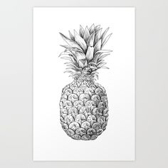 Hand drawn pineapple fruit, digital ink drawing.