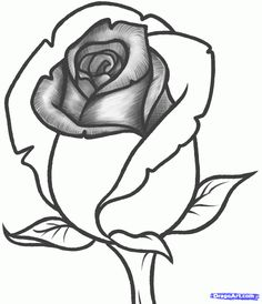 how to draw a rose bud, rose bud step 9