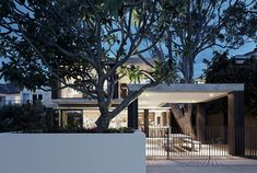 Melbourne architecture firm B.E. Architecture was asked to refurbish around an existing gum tree.