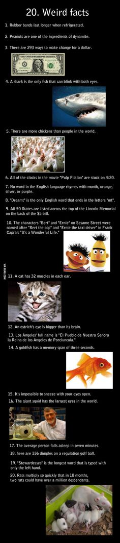 20 insane facts! - 9GAG