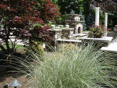 Fiberglass Pools, Outdoor Living Areas, Plant Design, Walkway, Landscape Design, Pergola, Construction, Plants, Projects