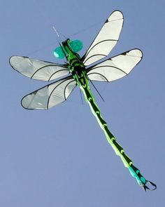 I never saw a dragonfly until you died.  I wandered about the house crying and a dragon fly appeared.  That dragonfly stayed with me until the funeral was over.  Recently a friend told me dragonfly's are the spirit of your loved one trying to comfort you.  I saw dragonfly's the entire summer after you died.  Was that you?