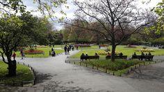 dublin-parque-saintstephengreen-irlanda Guinness, Dublin, Dolores Park, Sidewalk, Travel, Scotland, Ireland, United Kingdom, Edinburgh