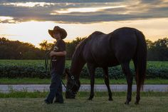 American Quarter Horse with his cowboy