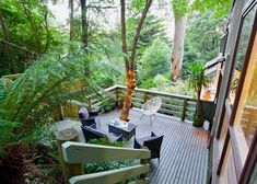 28 Best Luxury Pet Friendly Accommodation In Australia images in 2019