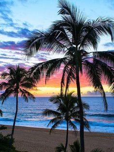 Pin By Colleen Reid On Beach Beach Beach Photos Tropical Beaches Types Of Photography, Landscape Photography, Nature Photography, Beautiful Sunset, Beautiful Beaches, Tropical Beaches, Tropical Vacations, Beach Fun, Summer Beach