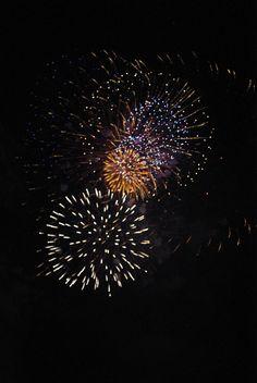 Fireworks Canada Day Fireworks, Dandelion, Celestial, Flowers, Plants, Outdoor, Outdoors, Dandelions, Plant