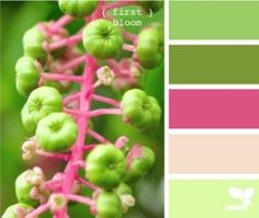 Love this color palette by clare