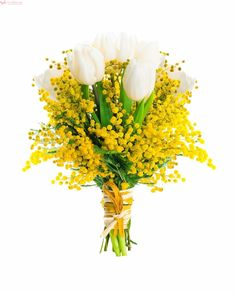 Imbratisarea Puritatii – Buchet cu 9 lalele si solidago Spring Flower Bouquet, Spring Flowers, White Tulips, Spring Collection, Stock Photos, Table Decorations, Green, Plants, Image