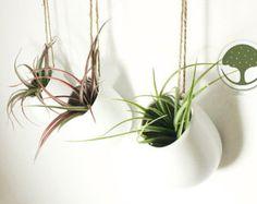 Satz von 3 leere Mini weiße keramische Wand Pflanzer, Air Plant hängende Pflanzgefäße Halter, hängende keramische Wand Vasen, Kunst-Wand-Dekor