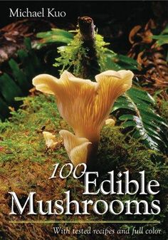 a dash of humor and a dollop of science, Michael Kuo selects the top 100 mushrooms best suited for cooking. Like Kuos very popular book Morels , 100 Edible Mushroom s is written in the authors in Edible Wild Mushrooms, Garden Mushrooms, Growing Mushrooms, Stuffed Mushrooms, Edible Wild Plants, Mushroom Hunting, Mushroom Fungi, Wild Edibles, All Nature