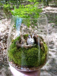 """This is a one of a kind fern and moss vase terrarium which measures 7-1/2"""" high by approximately 6-1/4"""" wide. The main attraction in this"""