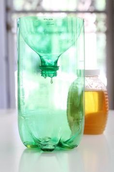 How To Make a Wasp Trap from a Soda Bottle — Apartment Therapy Tutorials Wasp Trap Diy, Homemade Wasp Trap, Wasp Traps, Bee Traps, Soda Bottle Crafts, Soda Bottles, Wasp Catcher, Bee Catcher, Household Bugs