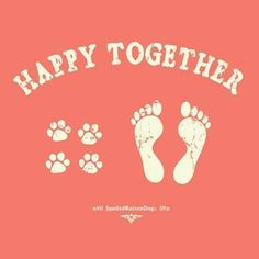 Happy Together - SpoiledRottenDogs #dogs #cats