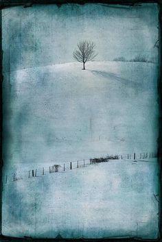 one hill tree 2 jamie heiden Abstract Landscape, Landscape Paintings, Landscape Glass, Landscape Photography, Art Photography, Encaustic Art, Winter Art, Paintings I Love, Winter Landscape
