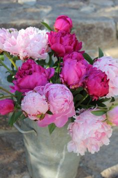 Peonies in a nickel bucket