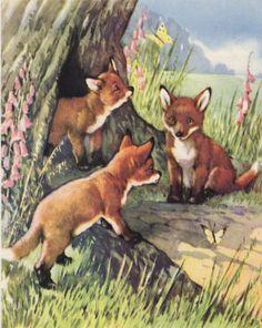 three baby Fox Cubs nursery decor Fox by VintageAndNostalgia, $24.95