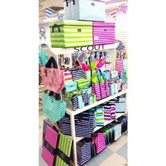 Whimsicality back at it with a fresh new look featuring our green, blue and pink stripes!