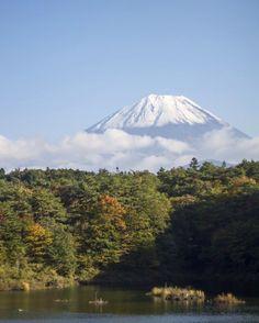 Mount Fuji from Lake Shoji (Shojiko). #Japan #roadtrip #fujifivelakes #familytrip #lakeshoji #mtfuji #japantrip (by strolling_adventures)