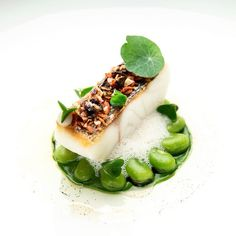 """""""Sea bass, broad beans, bacon, vanilla & lemon"""" by chef Sven . Chefs, Food Fantasy, Molecular Gastronomy, Fish Dishes, Food Presentation, Food Design, Food Plating, Organic Recipes, Food Pictures"""