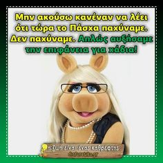 Funny Greek Quotes, Medical, Lol, Medicine, Med School, Fun