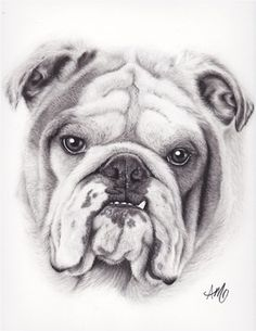 Easy Dog Drawings In Pencil For Kids Kids & dog portrait drawing