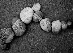 steengolf / stone wave | Jos van Wunnik | Flickr