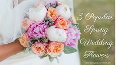 Brides are loving these three beautiful spring wedding flowers. Find out the upcoming wedding flower trends in our latest blog post! #weddingflowers