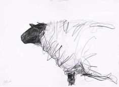 Jason Gathorne-Hardy, Suffolk Ewe Looking Left, White House Farm, Great Glemham, Autumn could do observational drawings of sheep in charcoal?---and a really detailed charcoal study of another animal? Line Drawing, Drawing Sketches, Painting & Drawing, Sketching, Animal Drawings, Art Drawings, Contour Drawings, Sheep Drawing, Art Postal