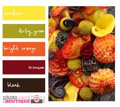 Love this palette!  Reminds me of fall, and the fiddle heads in the picture remind me of my wedding bouquet.