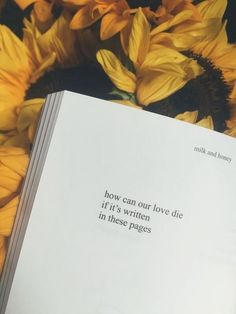 Milk and honey quote wallpapers halsey wallpapers 76 pictures Tumblr Backgrounds, Tumblr Wallpaper, Wallpaper Quotes, Spring Aesthetic, Book Aesthetic, Aesthetic Yellow, Aesthetic Poetry, Aesthetic Coffee, Nature Aesthetic