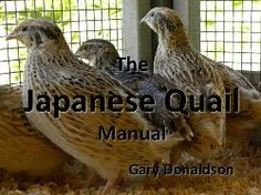 Backyard Japanese Quail; able to produce over 1000% itself in one year Online Urban Aquaponics Manual - Home