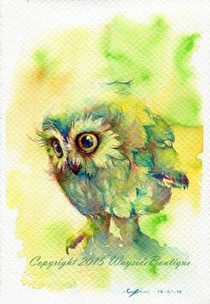 Chatkamol Chirawattana - owl