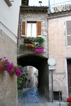 My favorite medieval town.  Spello, Italy 2010