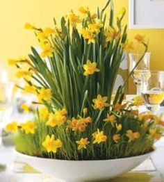 Spring Party Daffodil Centerpiece ~ It's Spring and bring in the Sunshine! Here is the perfect way for you to showcase the great outdoors ~ indoors!  Here's how to make this beautiful daffodil centerpiece. Beautiful!