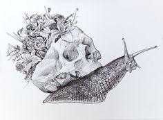 caracol by Sabotajealmontaje