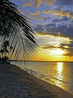 Puerto rico sunset share moments tropical paradise закаты, к Beautiful Sunset, Beautiful Beaches, Beautiful World, Puerto Rico, All Nature, Amazing Nature, Beach Scenes, Nature Pictures, Ciel