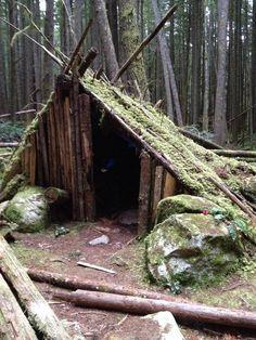 Amazing fairy/dryad fort found in Squamish, BC.