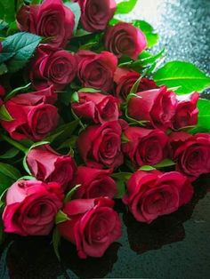 A bunch of red roses. Beautiful Rose Flowers, Wonderful Flowers, Good Morning Flowers, Red Flowers, Pink Roses, Beautiful Flowers, Tea Roses, Flowers Garden, Exotic Flowers