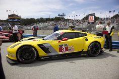 Corvette Racing 2014 Chevrolet Corvette Stingray C7.R