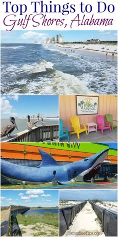 Top Things to do in Gulf Shores Alabama! Fun for the entire family while on vacation. From the beach to where to dine we have it covered for you! #travel #gulfshores #Alabama  via @tammileetips