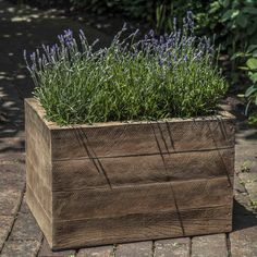 "Campania International, Inc Barn Board Rectangle Planter Box Size: 13.25"" H x 20.5"" W x 15.25"" D, Color: Natural"