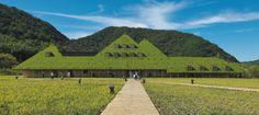 緑茂る丘のような建物、自然との格闘で実現|日経BP社 ケンプラッツ