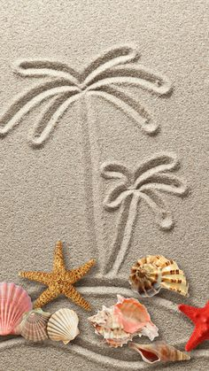 Drawing figure sand starfish texture sand seashells - Tap to see more Wallpapers for to brighten up your phone -