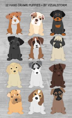 Cute puppy illustration set. 12 hand drawn images. #cutepuppyclipart #puppyclipart #puppyillustration #puppyscrapbook #puppyparty #puppygraphics #puppyimages #puppies #dogillustration #petillustration