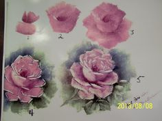 CHINA PAINTING STEP BY STEP ROSES ALICE NASH BLACKWELDER