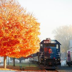 The South's Best Fall Color: Fall Color by Train
