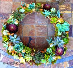 It's all here: How to create a Succulent wreath