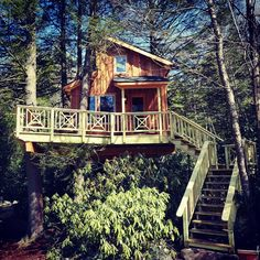 A very special #treehouse in Pennsylvania.  #beinatree #nelsontreehouse