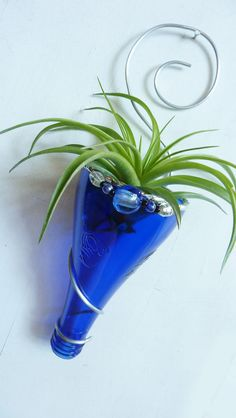 Air plant holder Recycled bottle sconce Blue with by glassetc